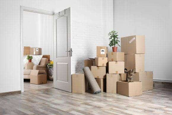 Move-Out Cleaning/Seasonal Rentals